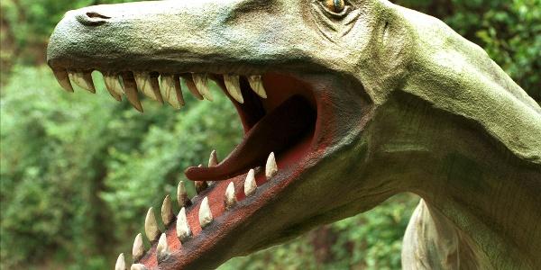 Raubsaurier tummelten sich in unserer Region