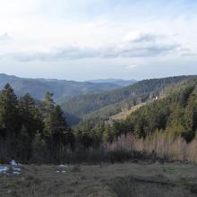 Blick in den Schwarzwald von der unteren Wanne