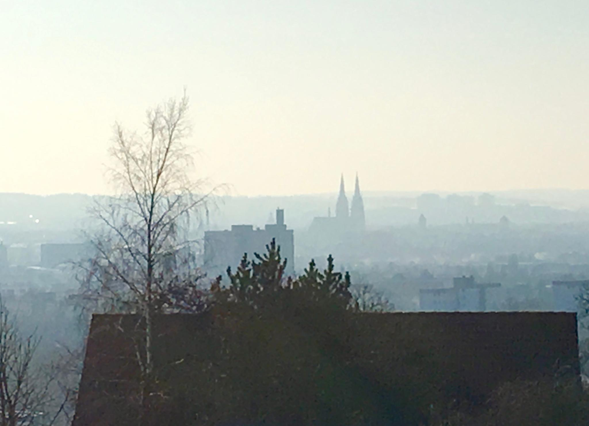 Grünthal Regensburg