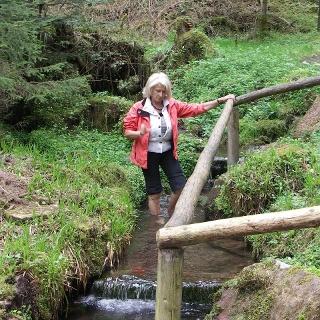 Natur-Kneippanlage Luchsbrunnen