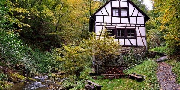 Etappe 22 Baybach - Heyweiler Bauernmühle