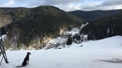Blick vom Skilift Lerbach