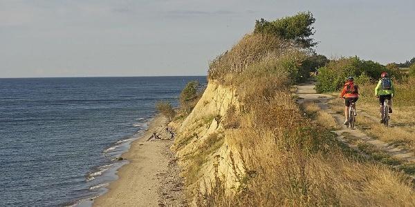 Steilküste bei Ahrenshoop auf der Halbinsel Fischland-Darß-Zingst