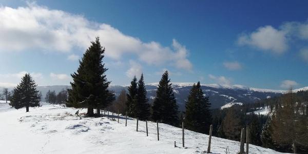 Blick von der Gmoa-Alm auf die Hirschegger-Alm
