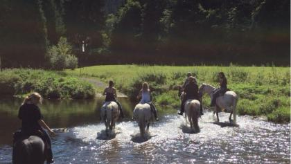 Westerwald zu Pferd