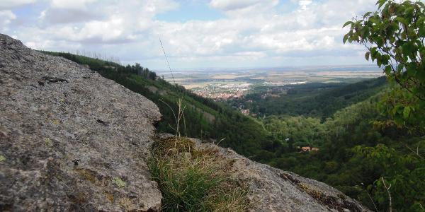 Halberstädter Berg