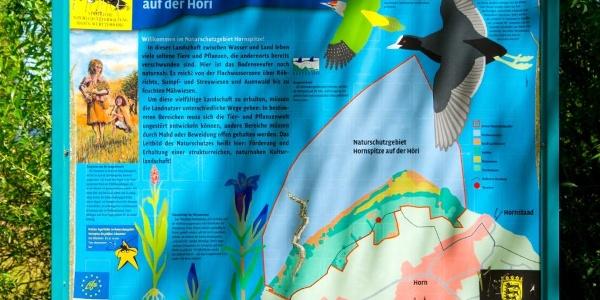 Informationstafel zum Naturschutzgebiet Hornspitze
