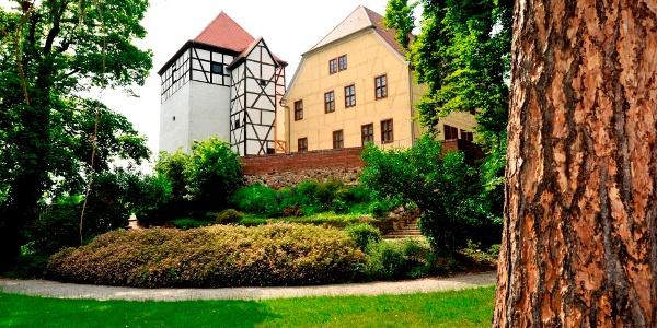 Burg in Bad Düben
