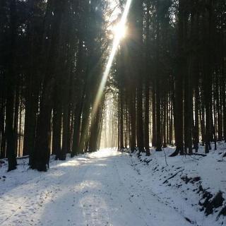 Weg zum Juxkopf