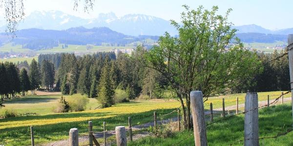 Wanderweg am Beichelstein