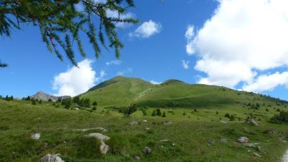 Monte Tonale Orientale
