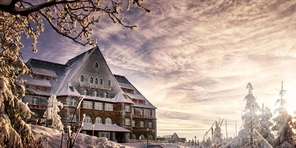 Sachenbaude Winterbild