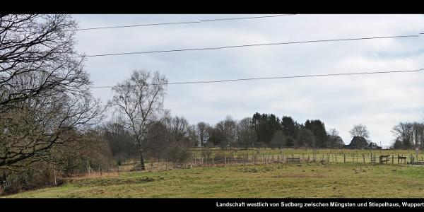Landschaft westlich von Sudberg zwischen Müngsten und Stiepelhaus