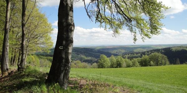 Vom Geisingberg