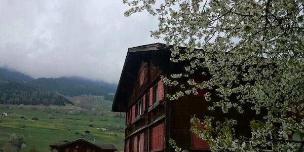 schöne Walserhäuser