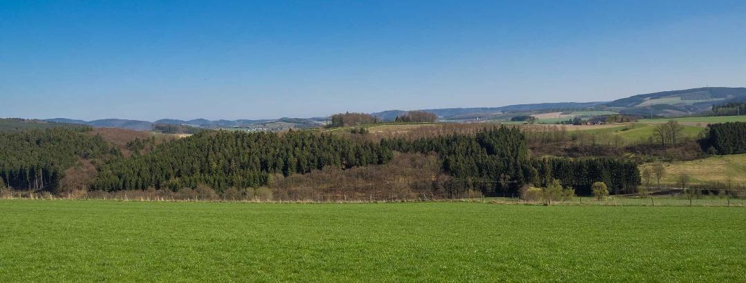 Richtung Wormbach und Berghausen