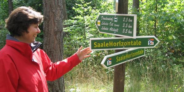 Saale-Horizontale Wegweiser