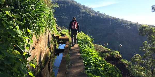 Folgen Sie der 'Levada dos Tornos' durch das ländliche Madeira.