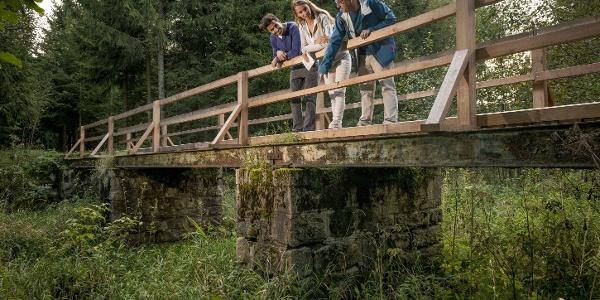 Alte Bahnbrücke Gutenbrunn
