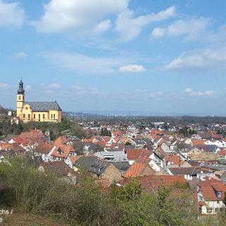 Blick auf Nackenheim
