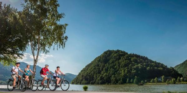 Donauradweg bei Schlögen