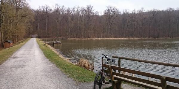 Katzenbacher See