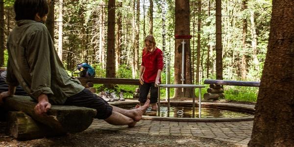 Wassertretbecken am Bimmelbahnerlebnispfad in Kretscham-Rothensehma
