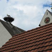 Kirche Bankholzen