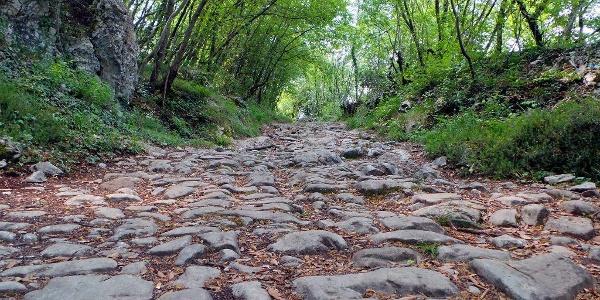 """The old Roman road """"Brozzera"""" in Drena"""