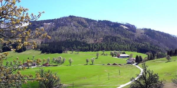 Hirschwaldstein 1.095m
