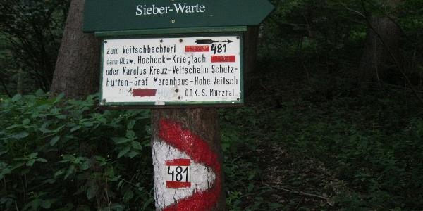 Variante von Neuberg zum Veitschbachtörl, Weg 481 (16.07.2012)