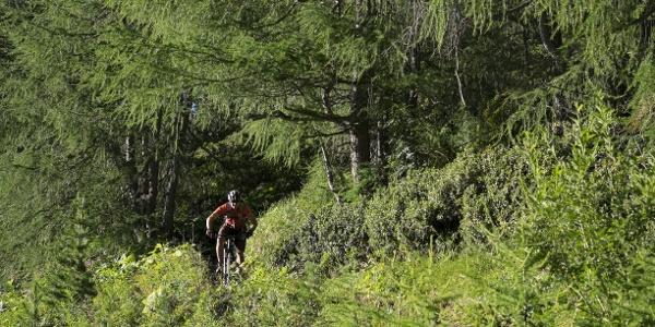 Jägers Notweg Trail