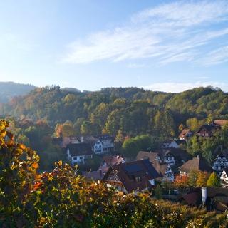 Blick aus den Reben über Sasbachwalden