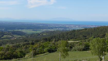 Blick Richtung Cecina und die Insel Elba in Riparbella