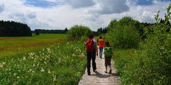 Wanderer auf dem Elbseesteg