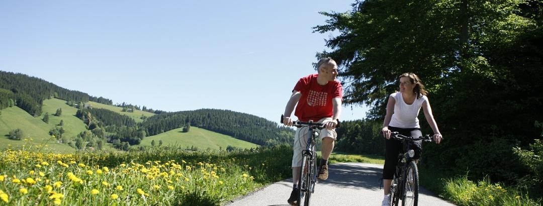 Mit dem Tourenrad auf den schönsten Radwegen im Schwarzwald