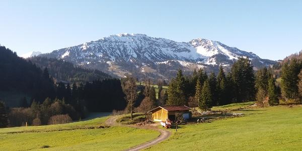 Alpenblick in Unterjoch
