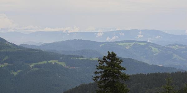 Blick auf den Nordschwarzwald | Photo: Martin Helmecke