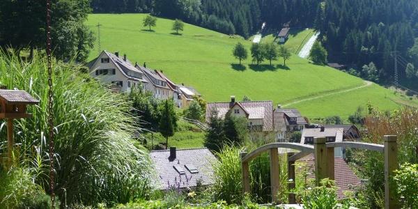 Aussicht auf die Sommerseite von Bad Peterstal-Griesbach
