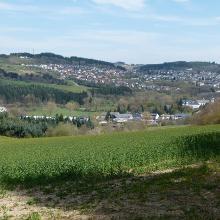 Blick auf die Waldstadt Prüm