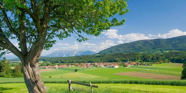 Panorama Weg Teisendorf © RoHa Fotothek