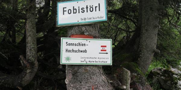 Das Fobistörl (20.07.2012)