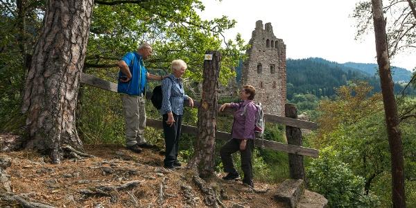 Blick zur Schenkenburg