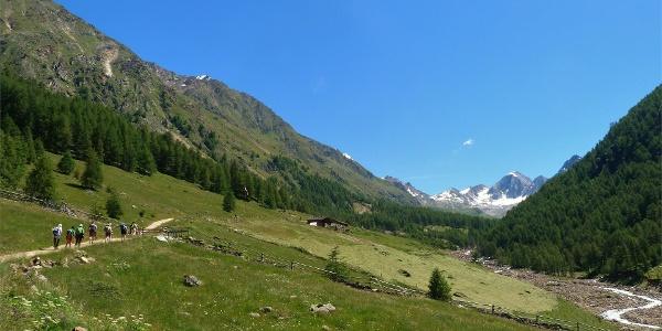 Alta Via di Merano - Val di Fosse
