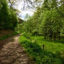 Foto von Wanderung: Vossenack: Vier Täler-Wanderung • Eifel (21.05.2017 20:32:45 #3)