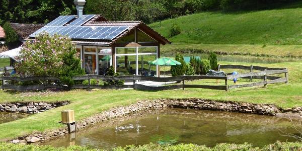Gourmet-Imbiss im schönen Würzbachtal