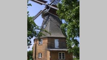 windmühle_altkalen