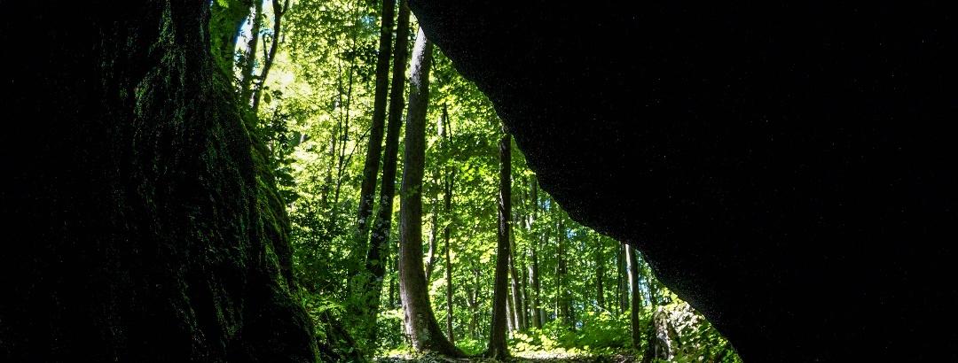 Kijárat a szakadéktöbör mélyéről (Udvar-kő-barlang)