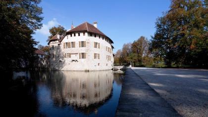 Schloss Hallwyl, Seengen