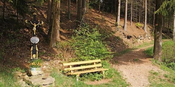 Trail im Perlbachtal